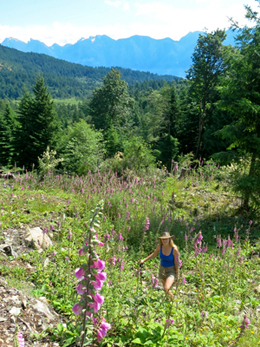 Photo of author in foxglove field.
