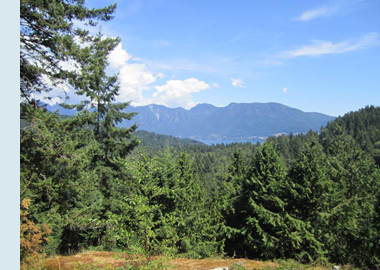 Photo of North Shore mountains from Belterra site.